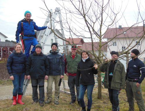 Baumschneidekurs beim Obst- und Gartenbauverein Schönberg
