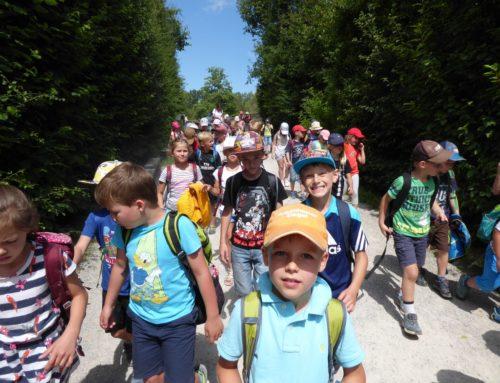 Grundschüler aus Oberbergkirchen besuchten Wildpark Poing