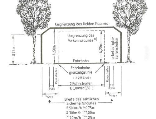 Zurückschneiden von Bäumen und Sträuchern an Straßen