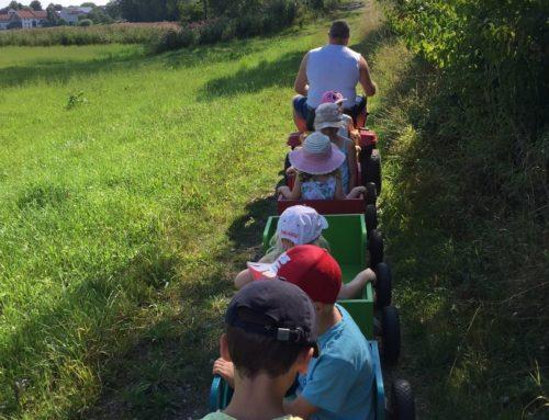 Mutter-Kind-Gruppe Lohkirchen beim Ponyhof