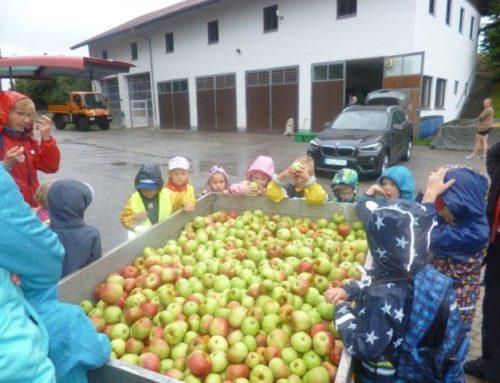 Kindertagesstätte St. Michael, Schönberg geht fit und gesund ins neue Kita-Jahr