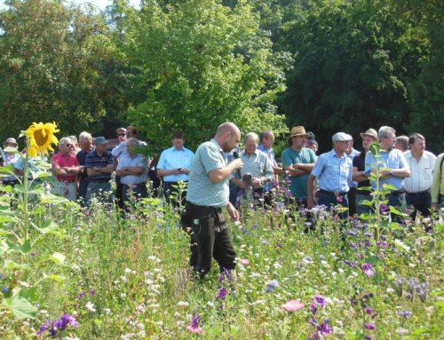 Gartenbauverein Schönberg startete in neue Saison