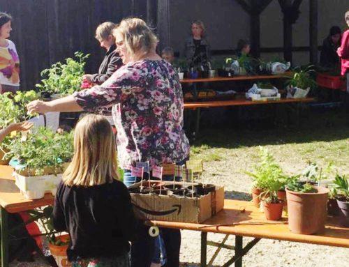Lohkirchner Früchdal veranstalteten Pflanzenbasar