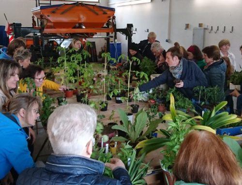 Zangberger Gartler tauschten Pflanzen aus