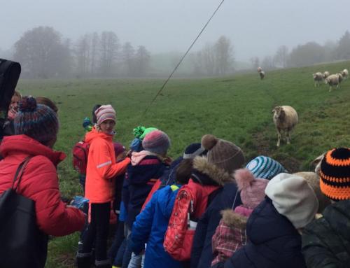 Zangberger Kinderbibeltag thematisierte die Geschichte vom guten Hirten