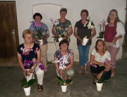 Schönberger Landfrauen ehrten Geburtstagskinder beim Stammtisch
