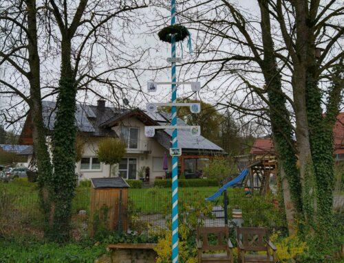 Zwei neue Maibäume zieren die Gemeinde Oberbergkirchen