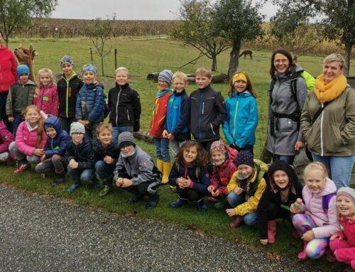 Grundschüler besuchten Erlebnisbauernhof